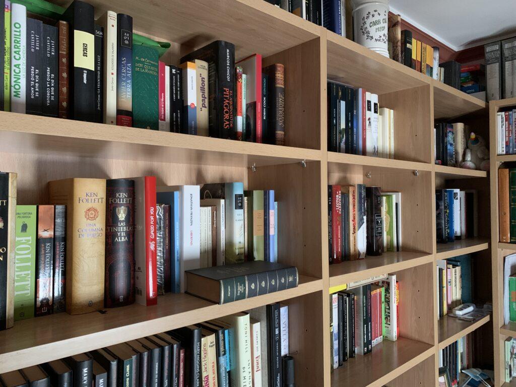 El infinito en un junco-Biblioteca